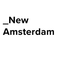 The New Amsterdam Group
