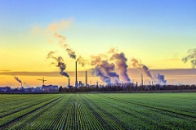 emissions carbon risk white papers