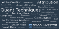 Quant strategies wordle factor investing papers
